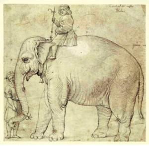 L'elefantino Annone