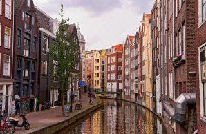 Amsterdam, tra natura e arte