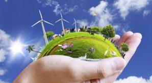 Startup e green economy, c'è ancora tempo per le agevolazioni